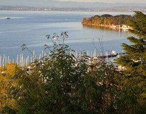 Achat / Vente programme immobilier neuf Thonon-les-Bains proche plages du Léman (74200) - Réf. 2345